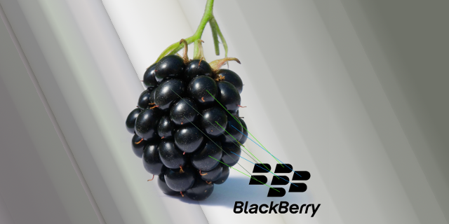 How to add / install input Languages on Blackberry devices